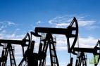 В соглашении ОПЕК+ по балансировке рынка нефти участвуют 24 государства