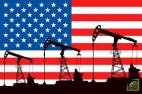 Американские власти также обсуждали ограниченное тестовое использование запаса, чтобы проверить, выдержит ли система более крупные продажи сырья из запасов