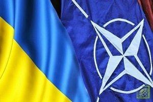 Обсуждение членства страны в альянсе среди стран-участниц будет проходить «не просто» - Яценюк.