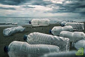 Документ ужесточит принцип «платит загрязнитель» — законопроект расширяет ответственность производителей за ущерб окружающей среде