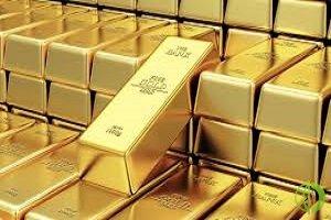 В июне экспорт российского золота составил 24,6 тонны