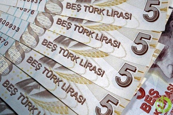 Турецкая лира упала в стоимости до исторического минимума