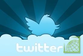 Twitter уже позволяет
